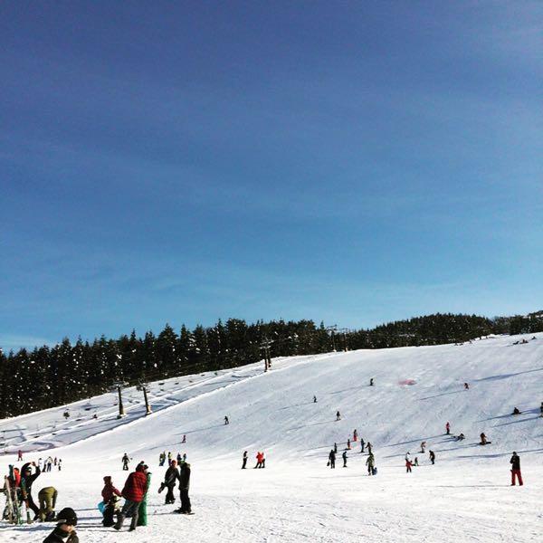 スキー ジャム 勝山 天気