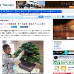 本物そっくり鉄筋盆栽 幹や枝溶接 帯広の平山さん制作|WEB TOKACHI-十勝毎日新聞